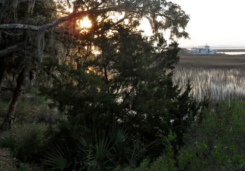 Sunrise at the Meridian Dock, Sapelo Island