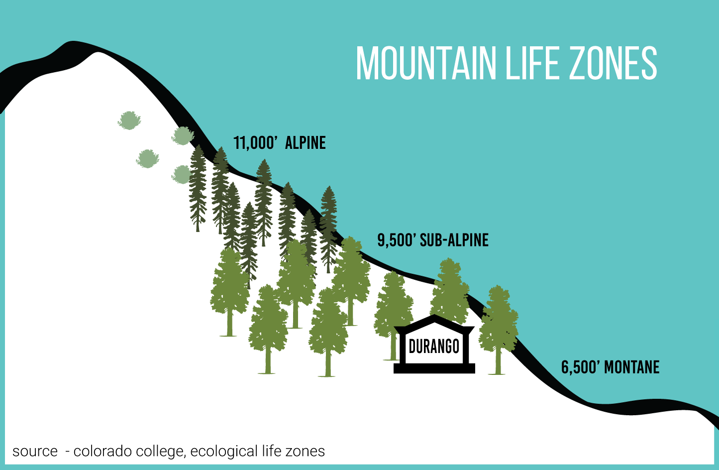 mountain-life-zones-graphic