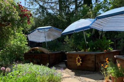 gardens-blog